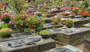 Kegyelet nyugalom temetés biztosítás